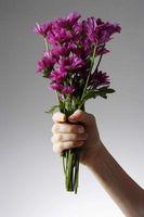 La temperatura óptima para el almacenamiento de las flores