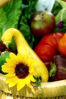 Cómo hacer de Protección Solar para plantas de hortalizas