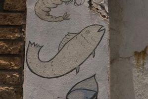 Cómo pintar en las paredes de los pescados