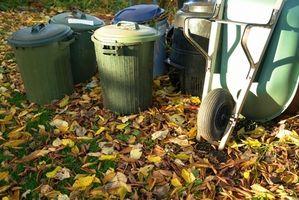 Como en abono los desechos de cocina para principiantes