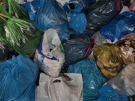 Las desventajas del uso de bolsas de plástico