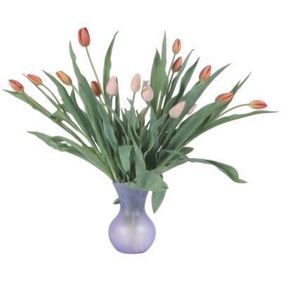 ¿El uso de agua de hielo en un florero Ayuda Mantener los tulipanes más tiempo?