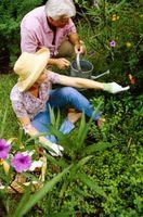 Cómo hacer un hormigón cerca del jardín