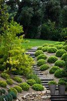Ideas simples y jardines grandes