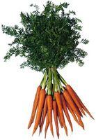 Los signos de fertilización excesiva Zanahorias