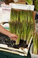¿Qué dos vegetales crecerán por su cuenta durante varios años sin ser replantado?